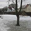 winterrundgang 20210114-105742